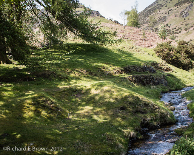 Stream Side Walk
