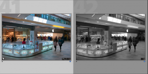 JPeg and Raw in Lightroom